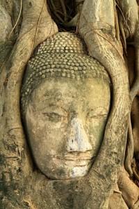 coaching voor boeddhisten